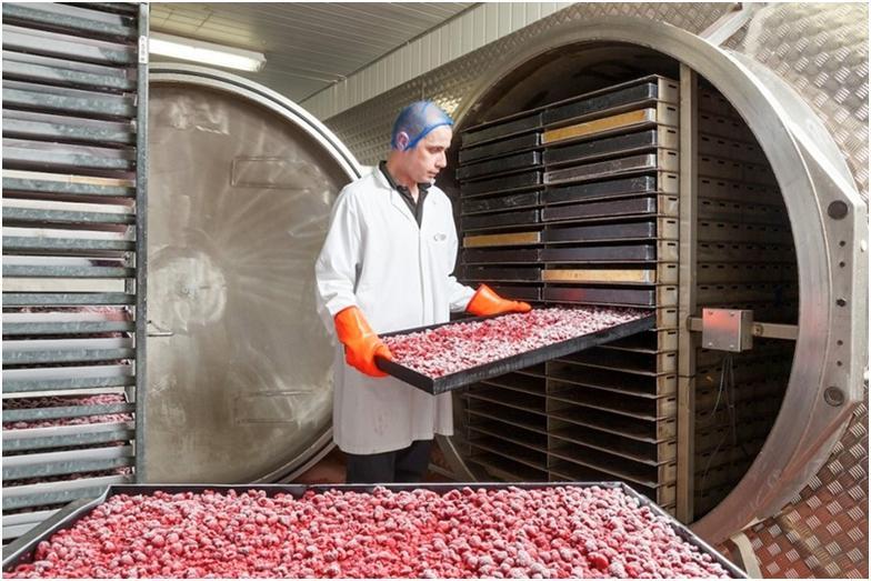 Вакуумная сушка овощей и фруктов – особенности процесса и его описание
